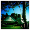 Protection arbres Tentsile