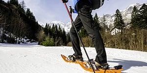 Snowshoes Ferrino